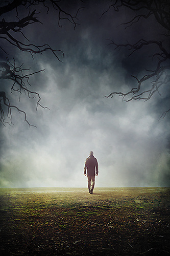 He Disappeared! what Happened? by Renee Piane